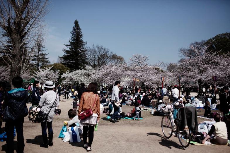 TS 20100423 japan 0447